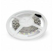 Tira led SMD5050 60L/m 24V IP20